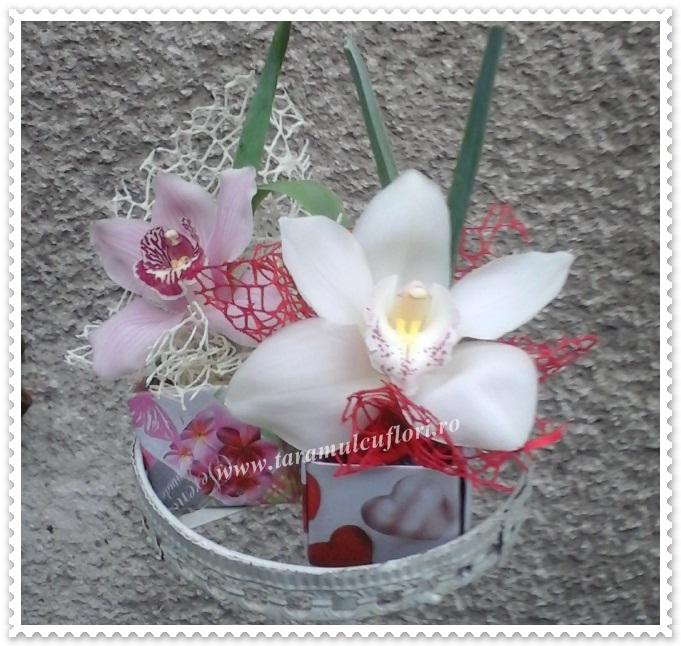 Cutiuta cu orhidee.0138
