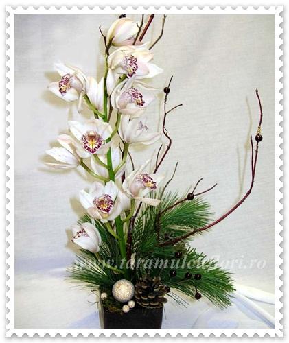 Aranjamente Craciun din orhidee-pinus-globuri 036