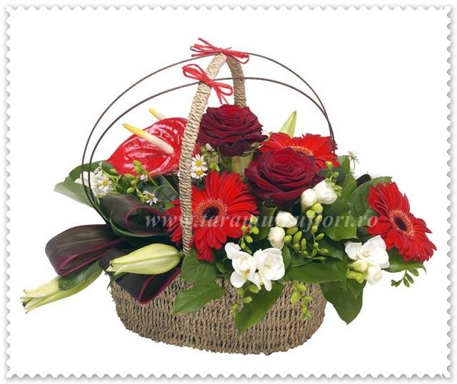 Cosuri cu trandafiri-gerbera-frezii-anthurium-crini 563