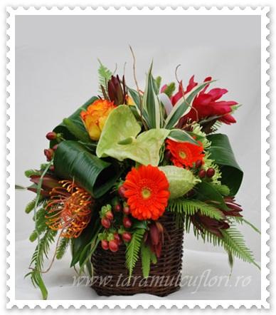 Aranjamente florale.583
