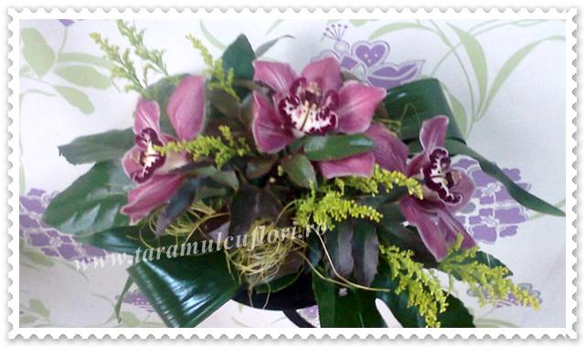 Aranjamente florale din orhidee.617
