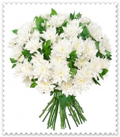 Buchete din crizanteme zembla.631