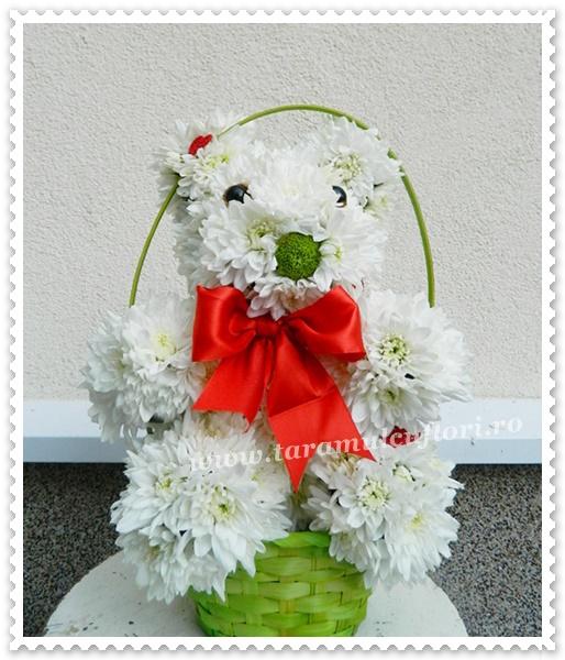 Ursulet din crizanteme.0247