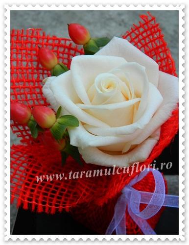 Saculeti cu trandafiri si hipericum.4131