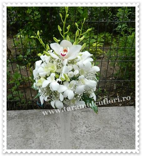 Aranjamente florale mese din orhidee.0065