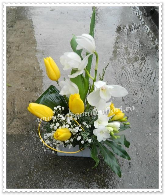 Aranajamente florale-frezii-lalele.8437