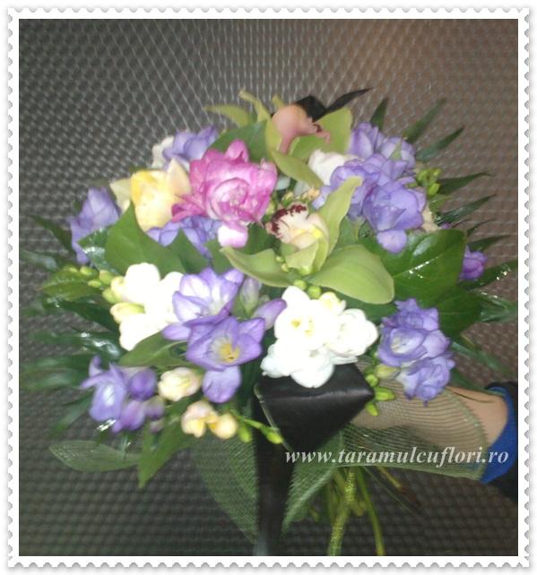 Buchete de flori din frezii si orhidee cymbidium 0319
