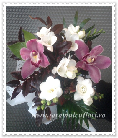 Buchete de flori din frezii si orhidee 0327