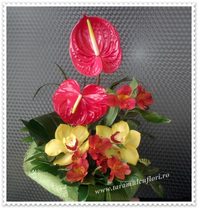 Cosuri cu flori. 0354