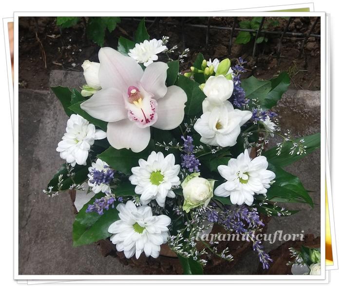 Aranjamente florale cu levantica