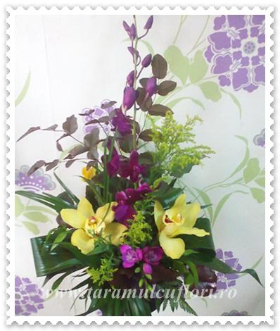 Aranjamente florale din orhidee cymbidium si dendrobium.603